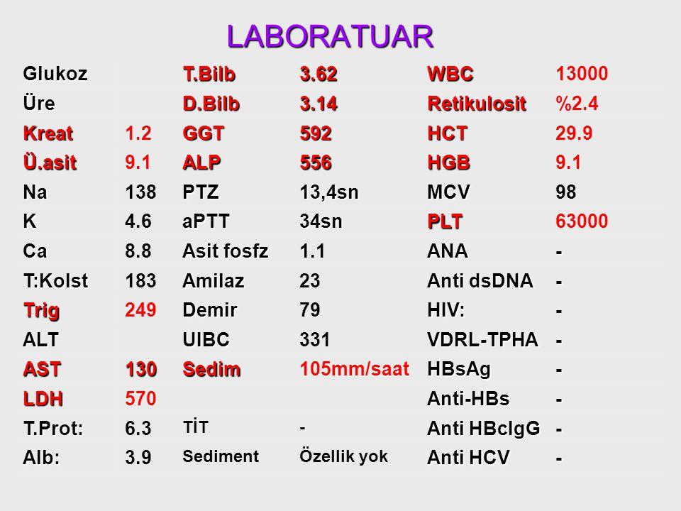 LABORATUAR Glukoz 96 T.Bilb 3.62 WBC 13000 Üre 18 D.Bilb 3.14