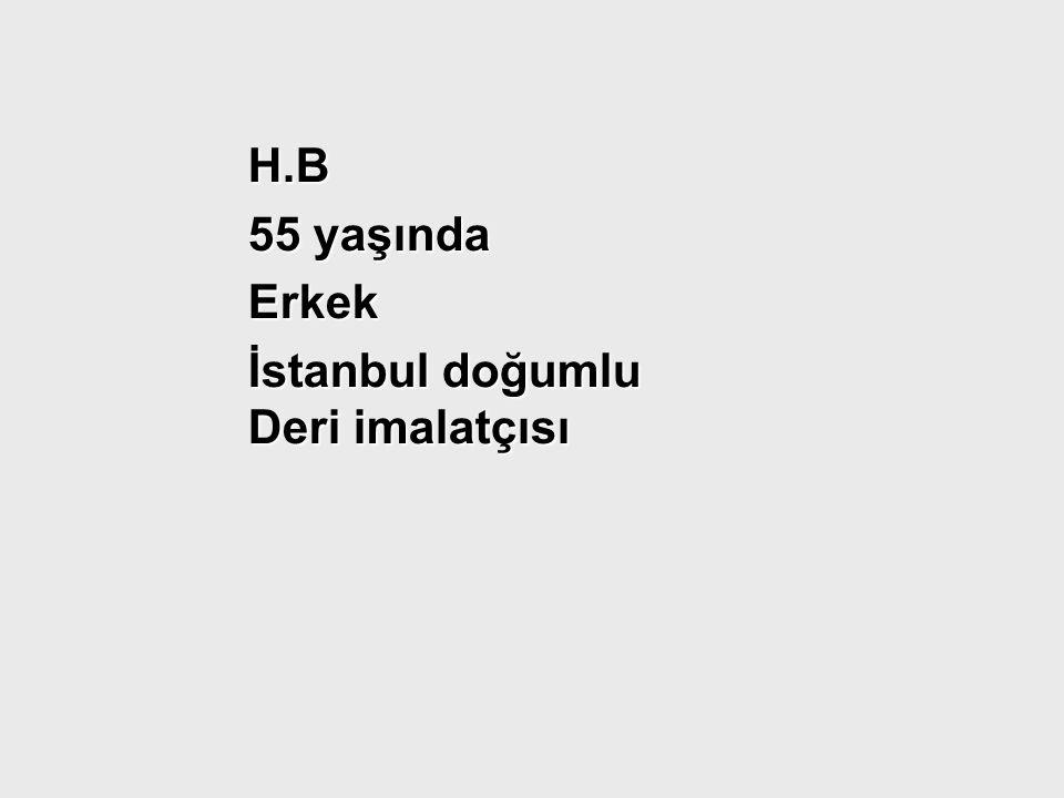 H.B 55 yaşında Erkek İstanbul doğumlu Deri imalatçısı
