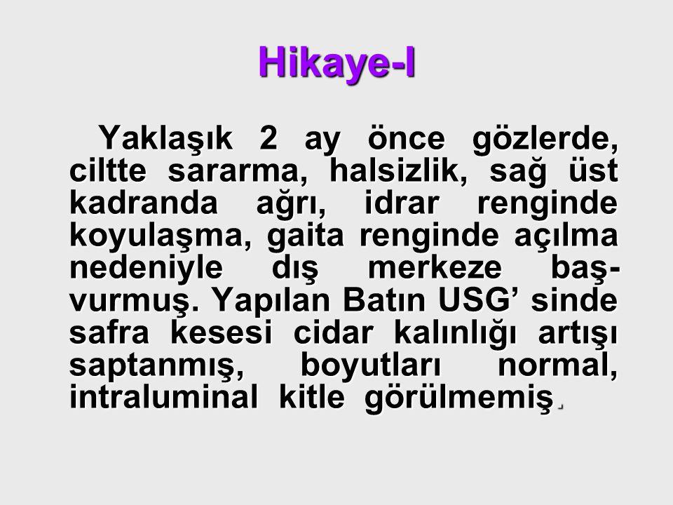 Hikaye-I