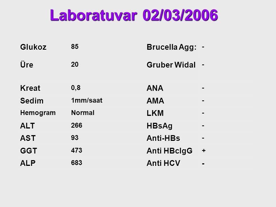 Laboratuvar 02/03/2006 Glukoz Brucella Agg: Üre Gruber Widal Kreat ANA