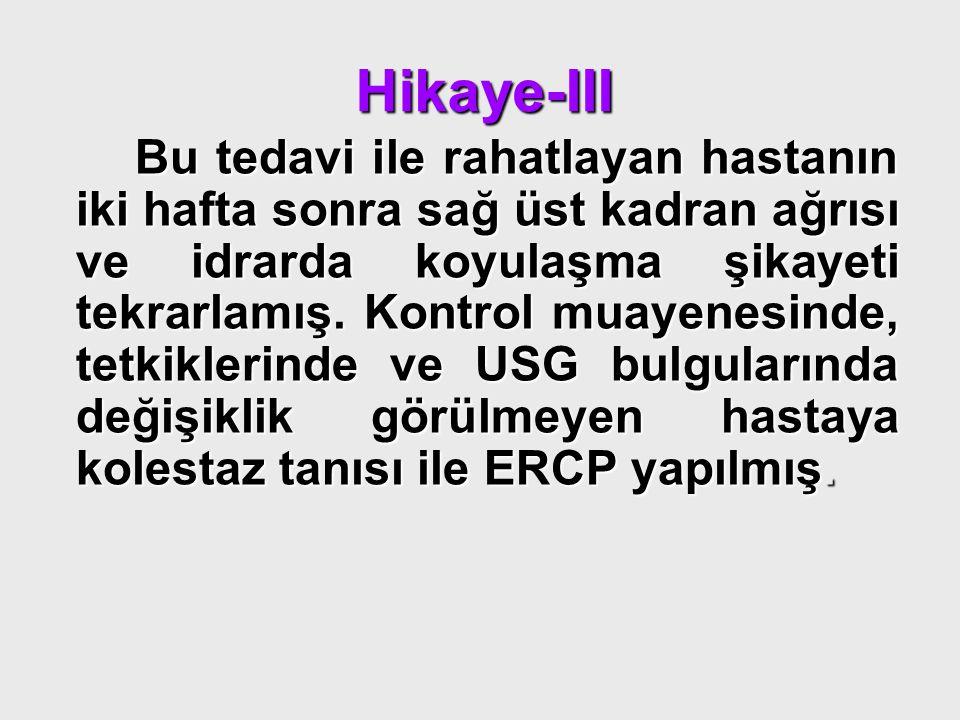Hikaye-III