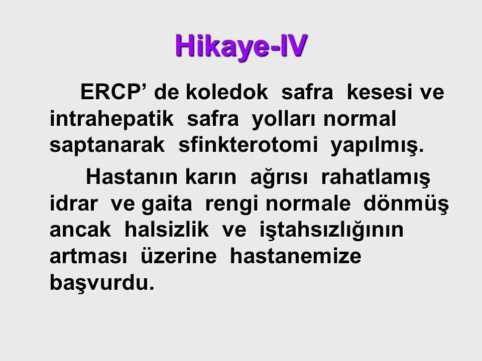 Hikaye-IV