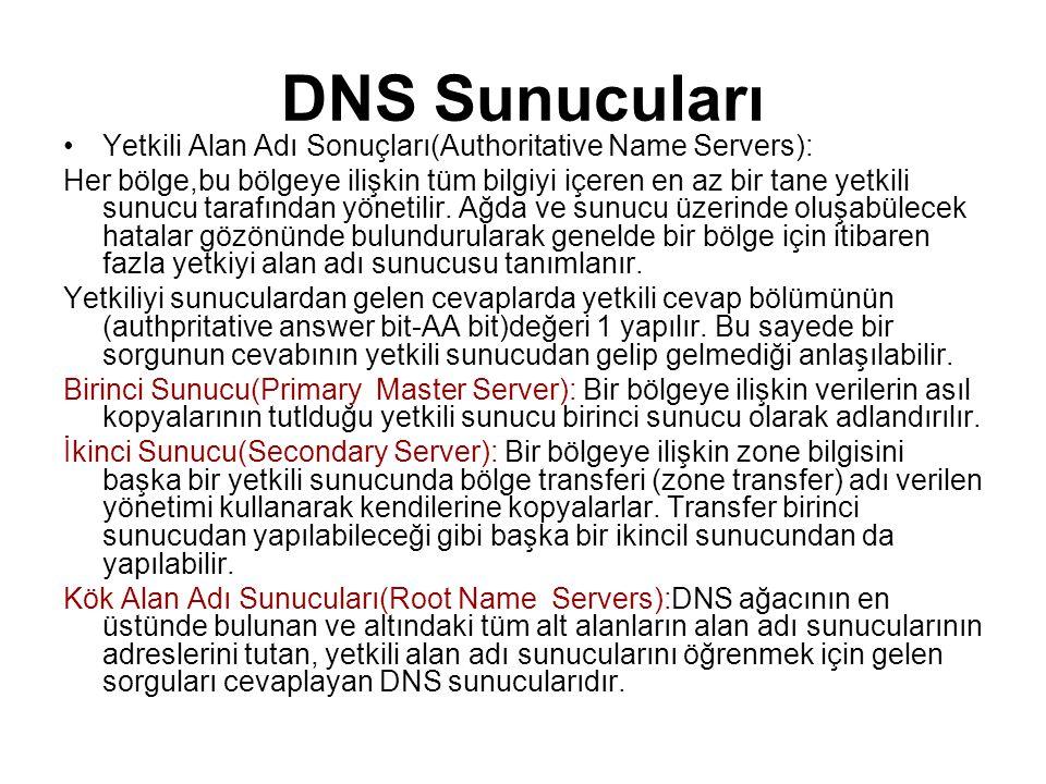DNS Sunucuları Yetkili Alan Adı Sonuçları(Authoritative Name Servers):
