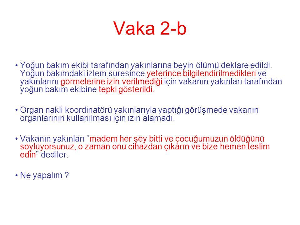 Vaka 2-b
