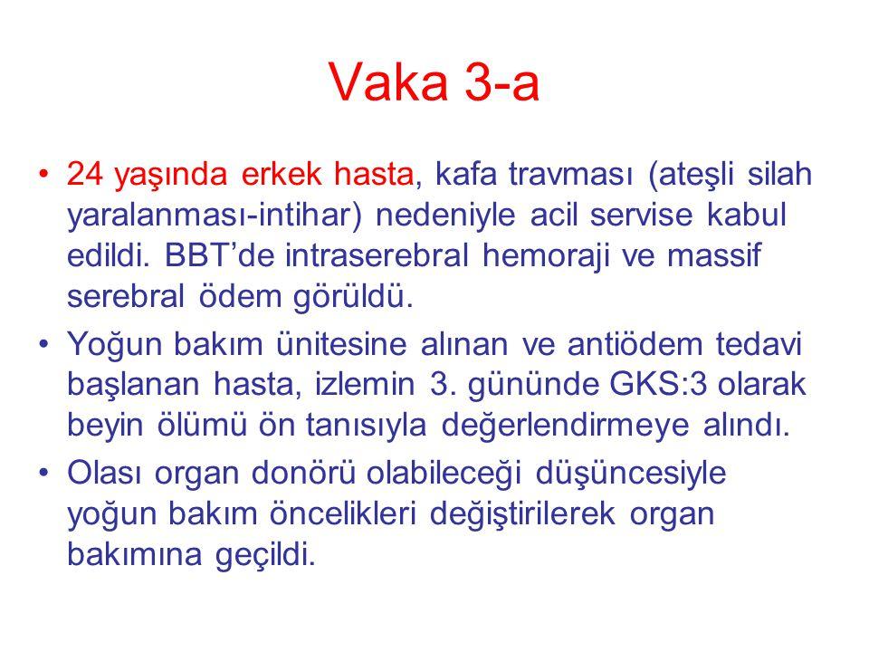 Vaka 3-a
