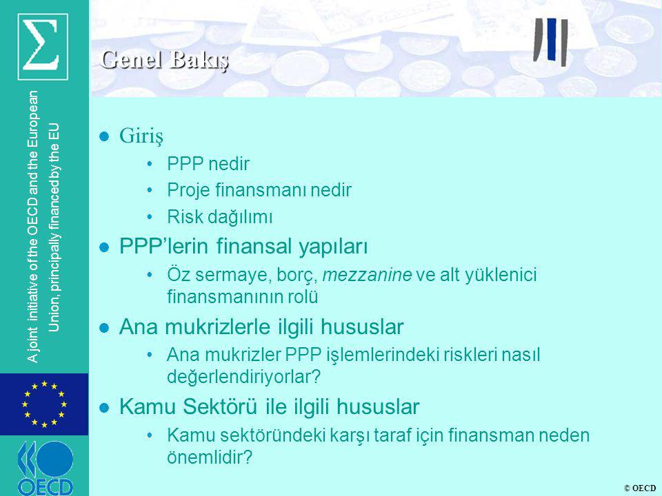 Genel Bakış Giriş PPP'lerin finansal yapıları
