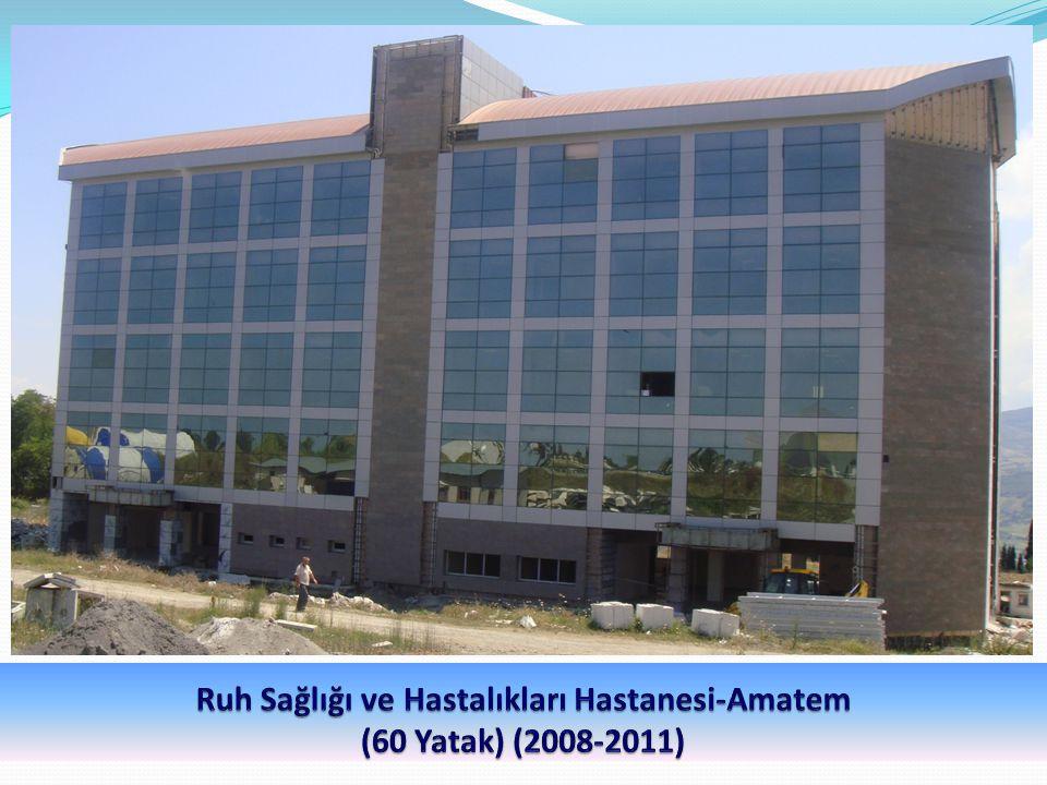 Ruh Sağlığı ve Hastalıkları Hastanesi-Amatem (60 Yatak) (2008-2011)