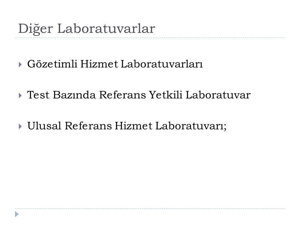 Diğer Laboratuvarlar Gözetimli Hizmet Laboratuvarları