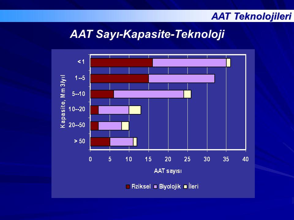 AAT Sayı-Kapasite-Teknoloji