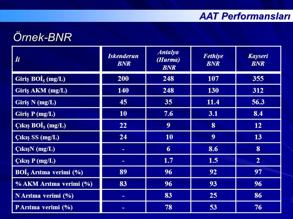 Örnek-BNR AAT Performansları 200 248 107 355 140 130 312 45 35 11.4