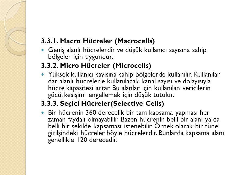3.3.1. Macro Hücreler (Macrocells)