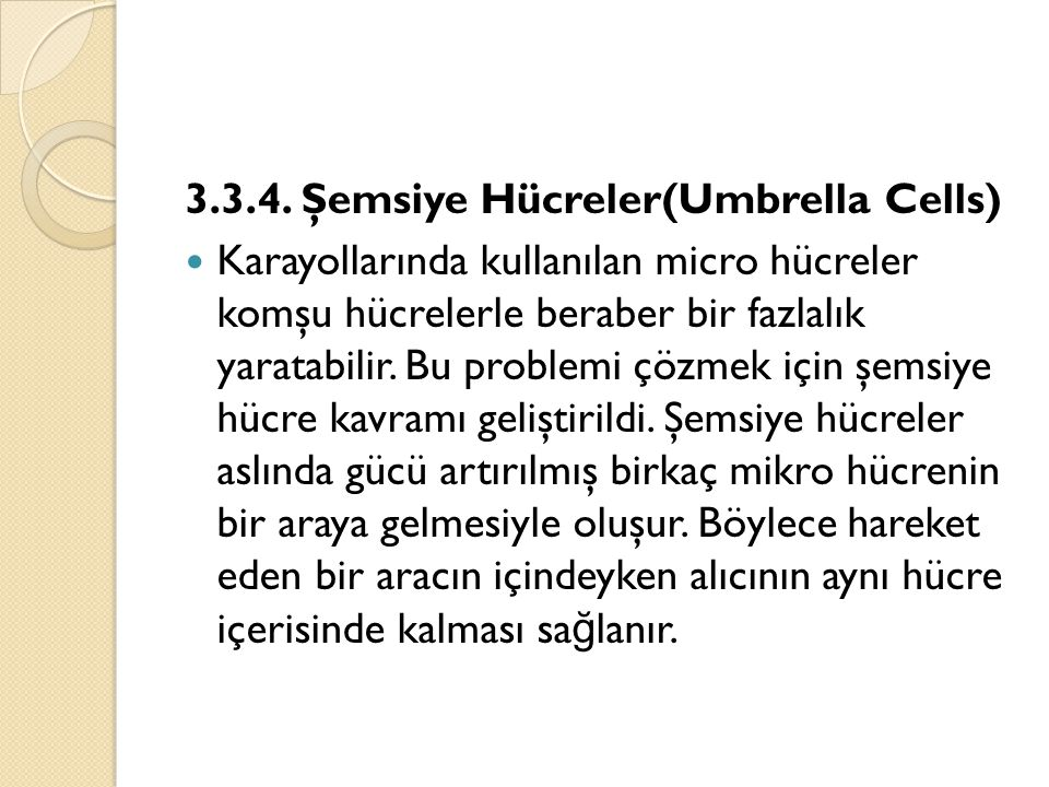 3.3.4. Şemsiye Hücreler(Umbrella Cells)