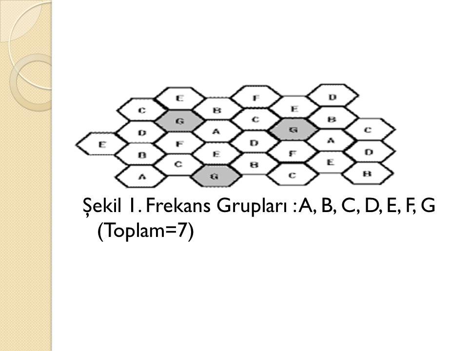 Şekil 1. Frekans Grupları : A, B, C, D, E, F, G (Toplam=7)