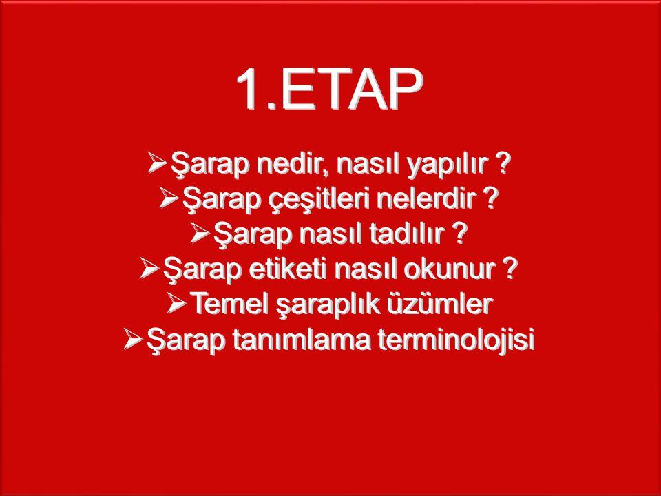 ETAP Şarap nedir, nasıl yapılır Şarap çeşitleri nelerdir