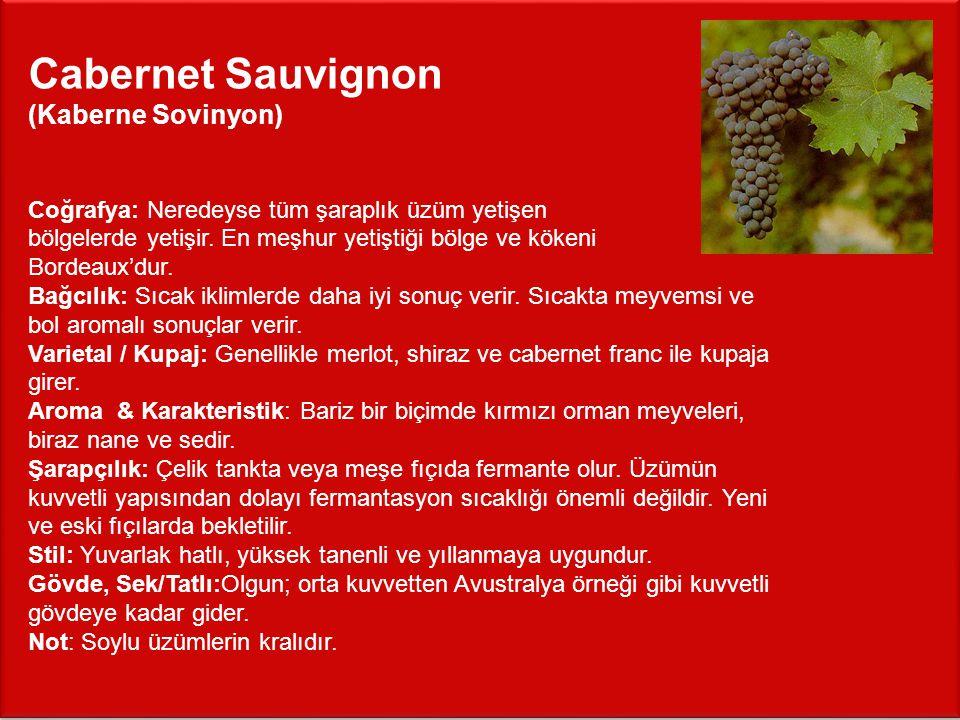 Cabernet Sauvignon (Kaberne Sovinyon)