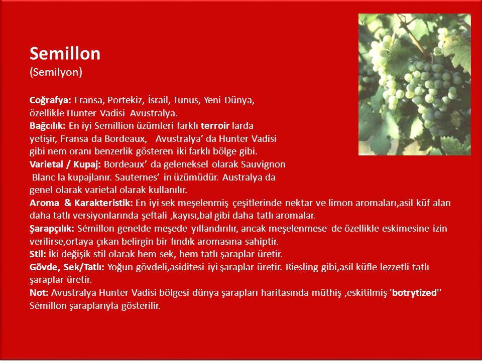 Semillon (Semilyon) Coğrafya: Fransa, Portekiz, İsrail, Tunus, Yeni Dünya, özellikle Hunter Vadisi Avustralya.