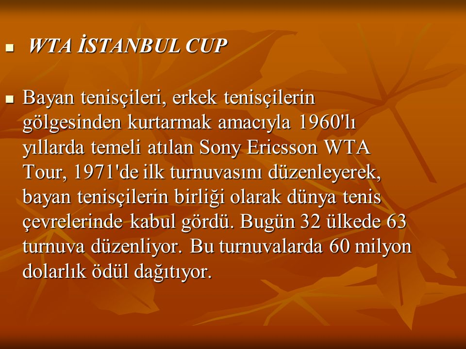 WTA İSTANBUL CUP