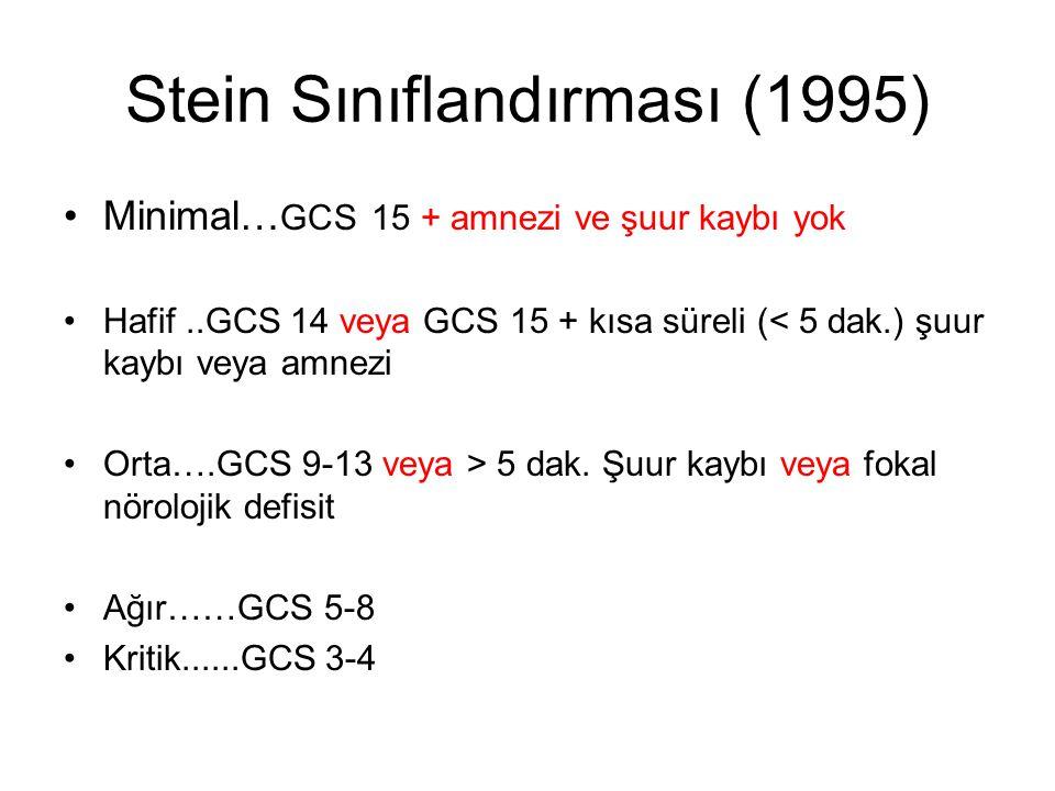 Stein Sınıflandırması (1995)
