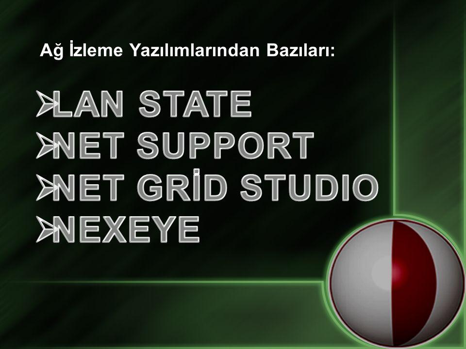 LAN STATE NET SUPPORT NET GRİD STUDIO NEXEYE