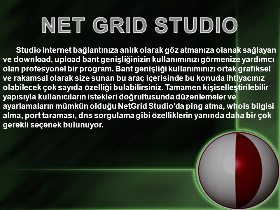 NET GRID STUDIO