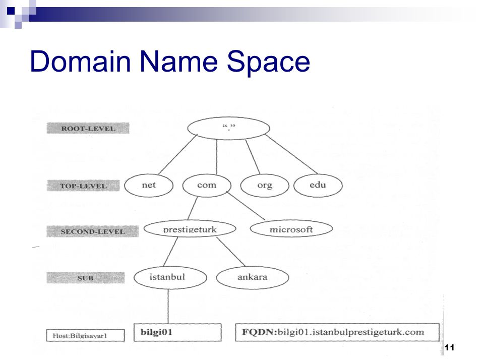 Domain Name Space