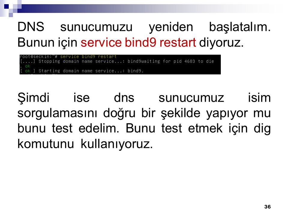 DNS sunucumuzu yeniden başlatalım