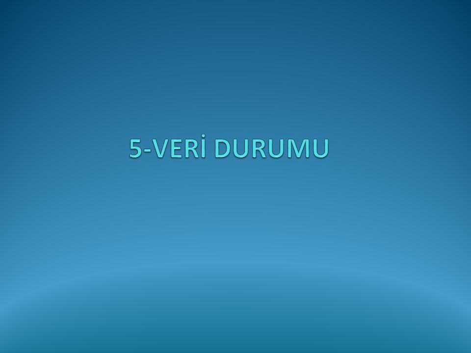 5-VERİ DURUMU