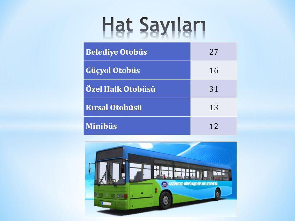Hat Sayıları Belediye Otobüs 27 Güçyol Otobüs 16 Özel Halk Otobüsü 31