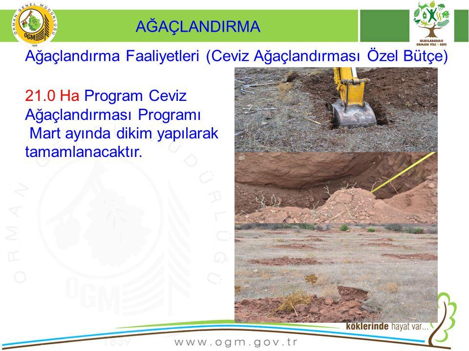 AĞAÇLANDIRMA Ağaçlandırma Faaliyetleri (Ceviz Ağaçlandırması Özel Bütçe) 21.0 Ha Program Ceviz Ağaçlandırması Programı.