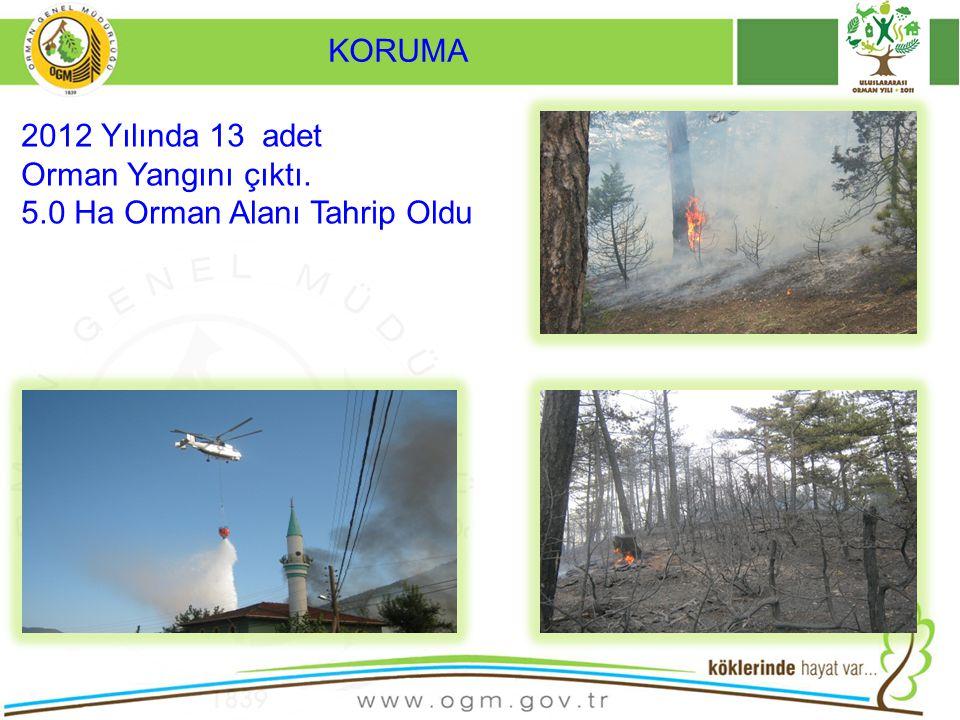 KORUMA 2012 Yılında 13 adet Orman Yangını çıktı. 5.0 Ha Orman Alanı Tahrip Oldu