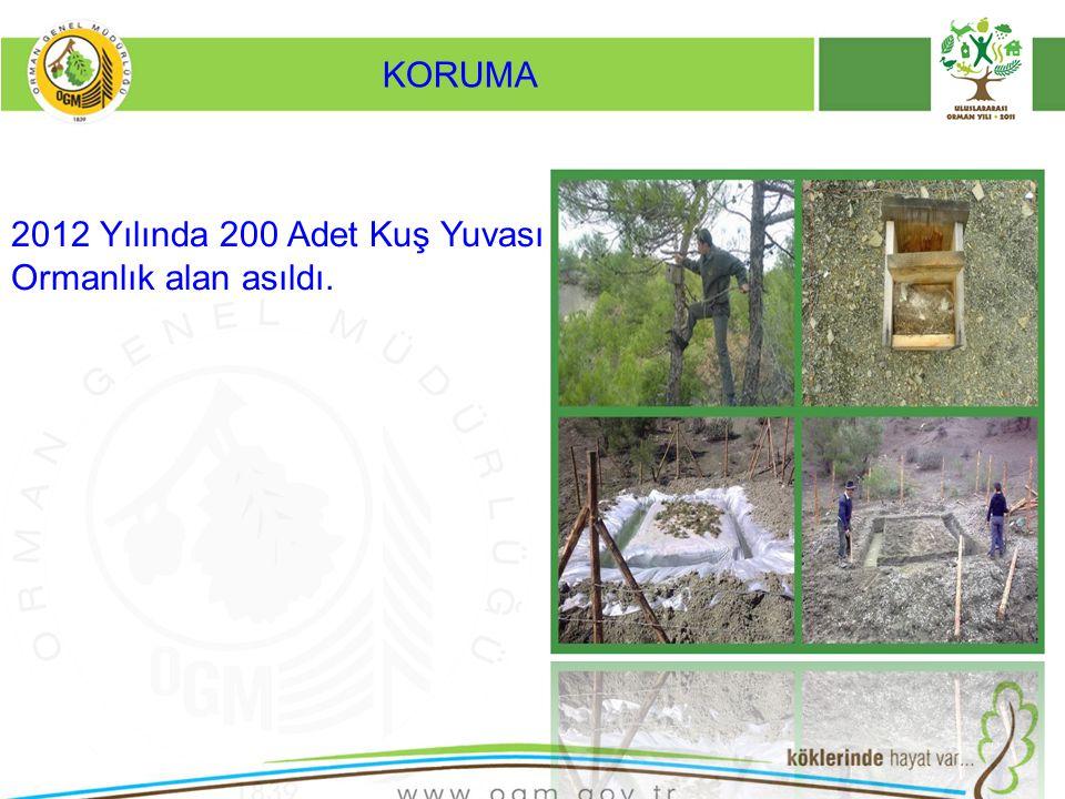 KORUMA 2012 Yılında 200 Adet Kuş Yuvası Ormanlık alan asıldı.