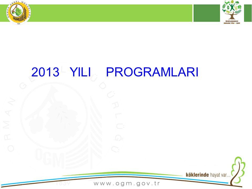 2013 YILI PROGRAMLARI