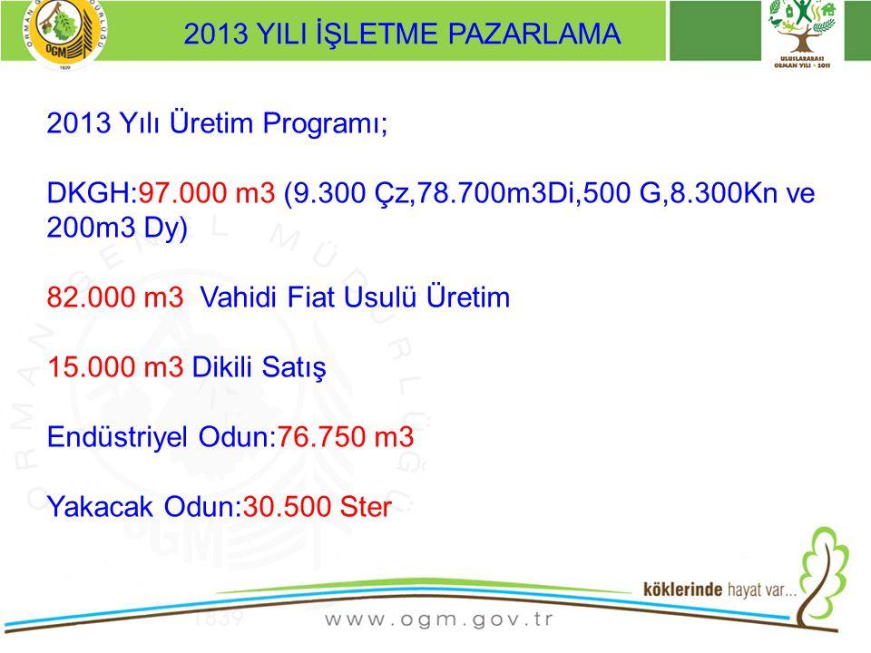 2013 YILI İŞLETME PAZARLAMA