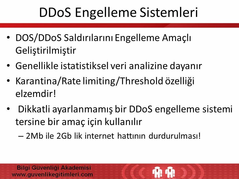 DDoS Engelleme Sistemleri