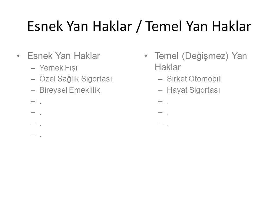 Esnek Yan Haklar / Temel Yan Haklar