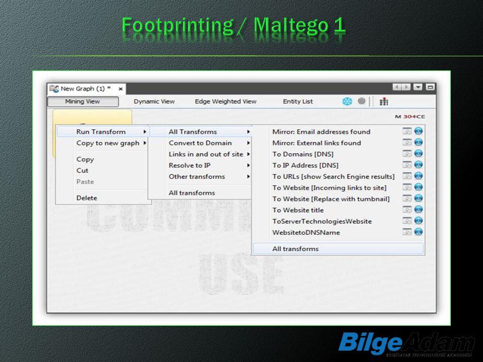 Footprinting / Maltego 1