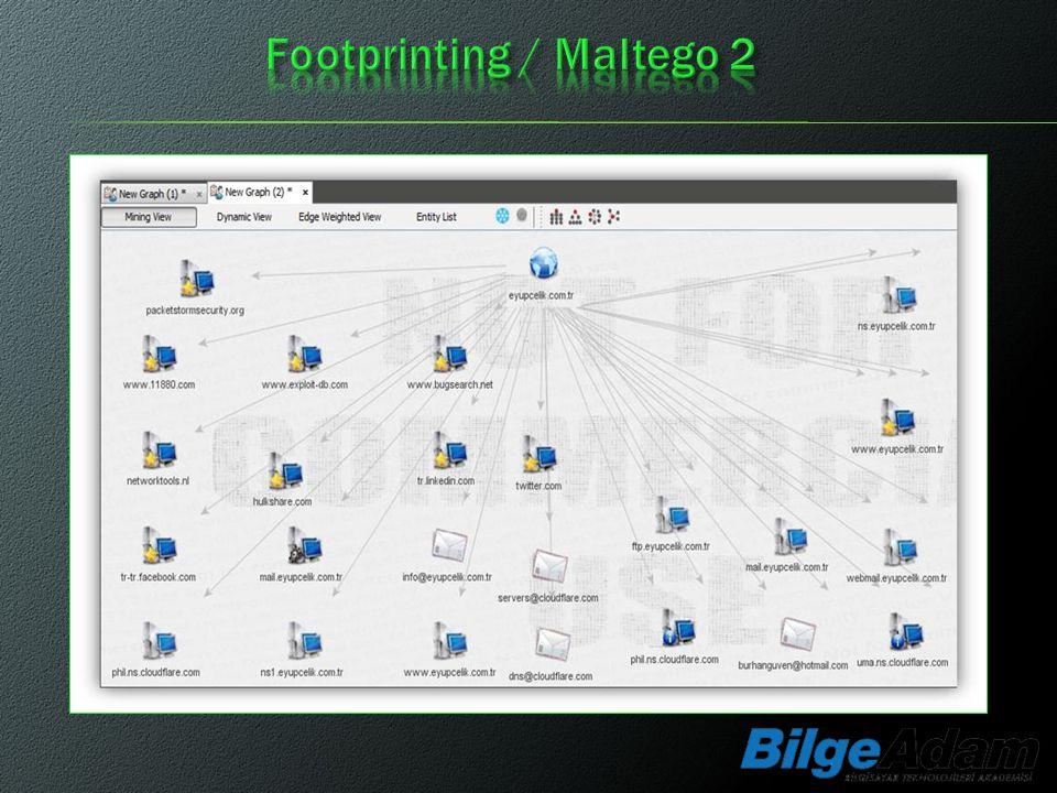 Footprinting / Maltego 2