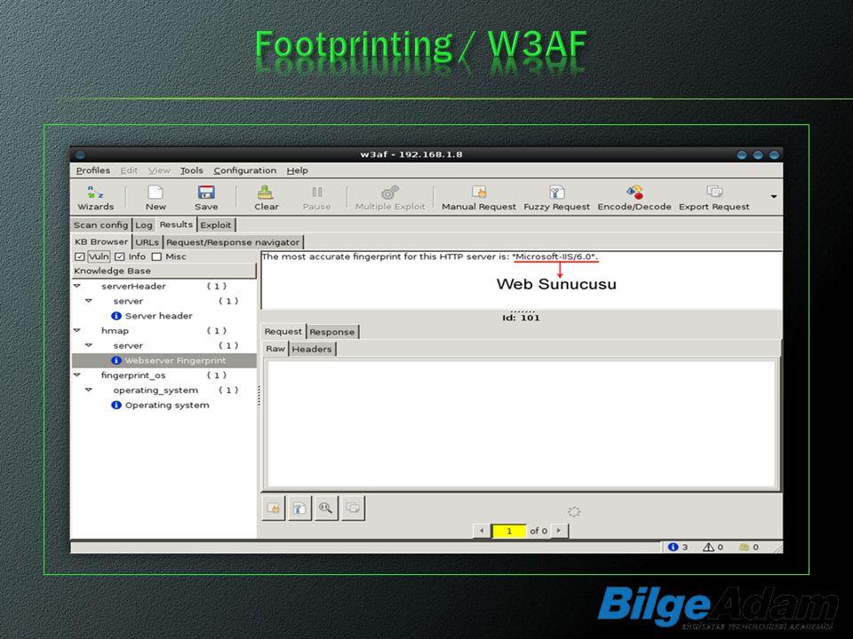 Footprinting / W3AF