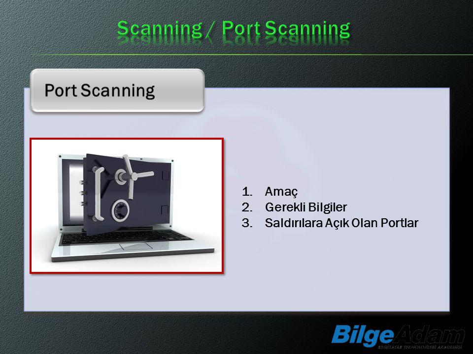 Scanning / Port Scanning