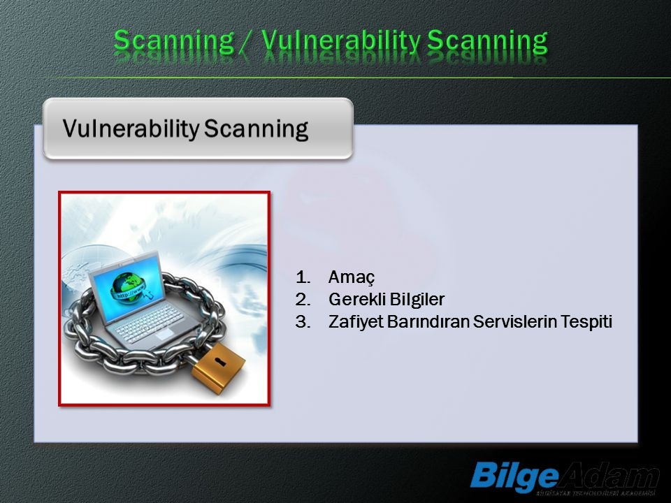 Scanning / Vulnerability Scanning