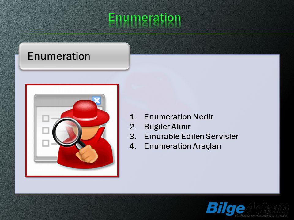 Enumeration Enumeration Enumeration Nedir Bilgiler Alınır
