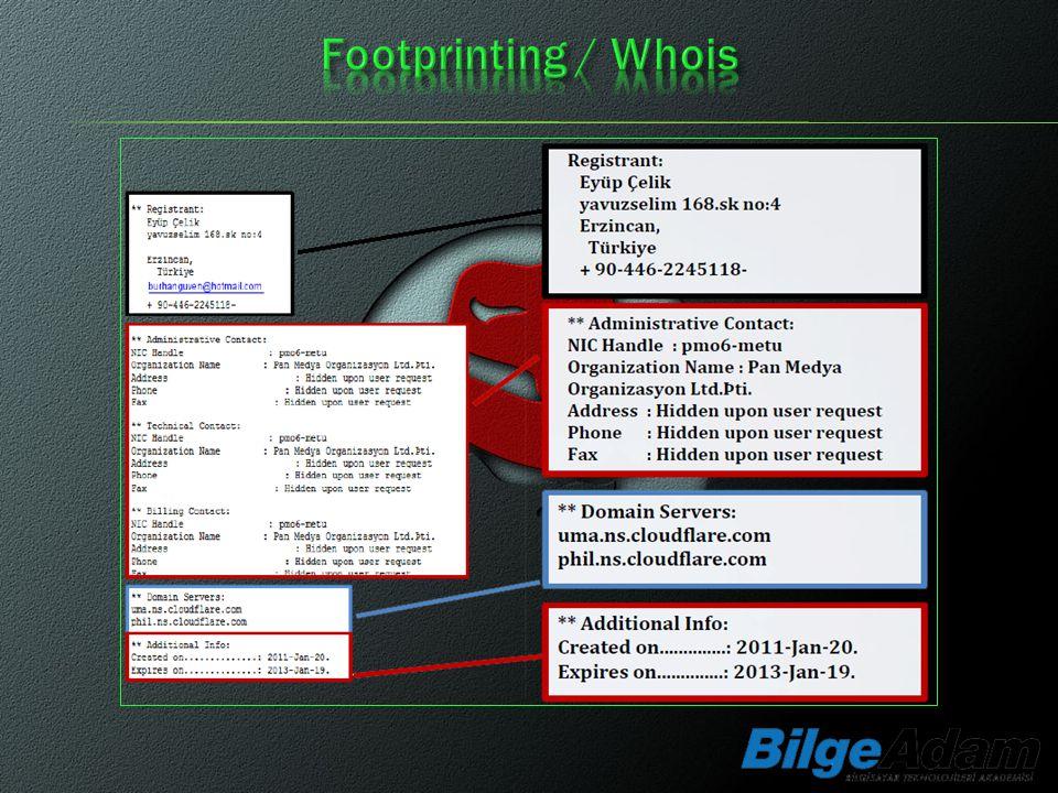Footprinting / Whois