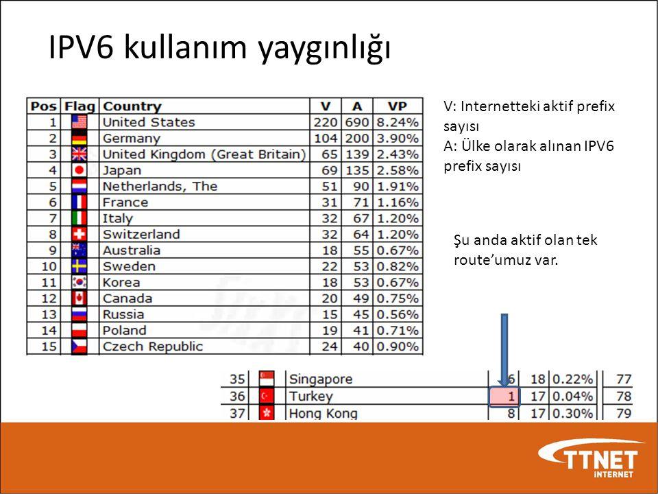 IPV6 kullanım yaygınlığı