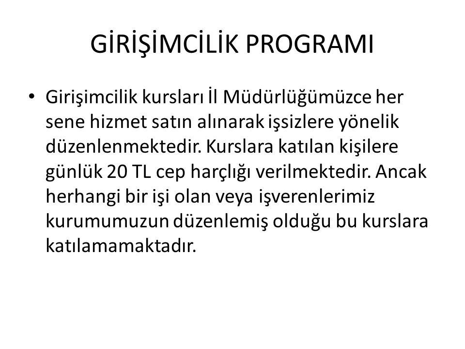 GİRİŞİMCİLİK PROGRAMI