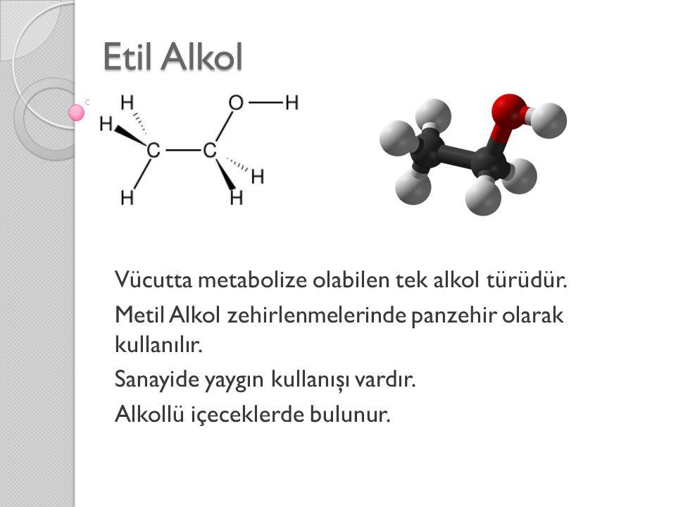 Etil Alkol Vücutta metabolize olabilen tek alkol türüdür.