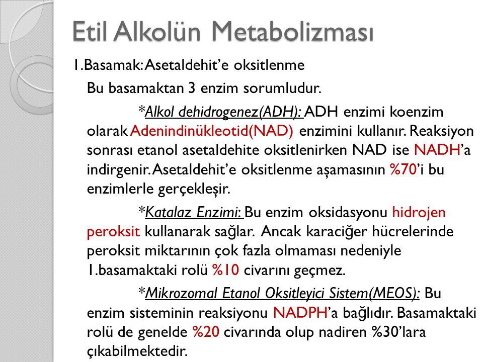 Etil Alkolün Metabolizması