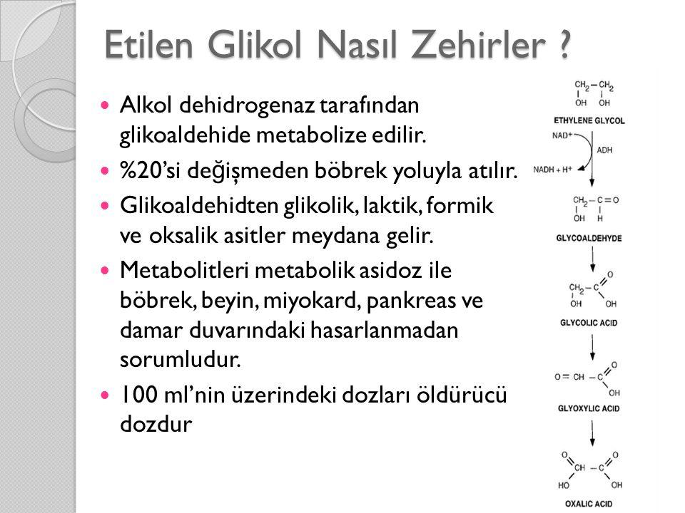 Etilen Glikol Nasıl Zehirler