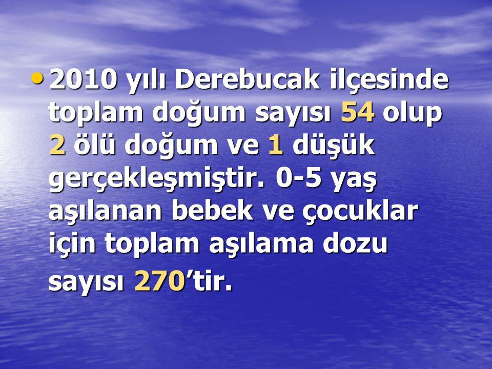 2010 yılı Derebucak ilçesinde toplam doğum sayısı 54 olup 2 ölü doğum ve 1 düşük gerçekleşmiştir.
