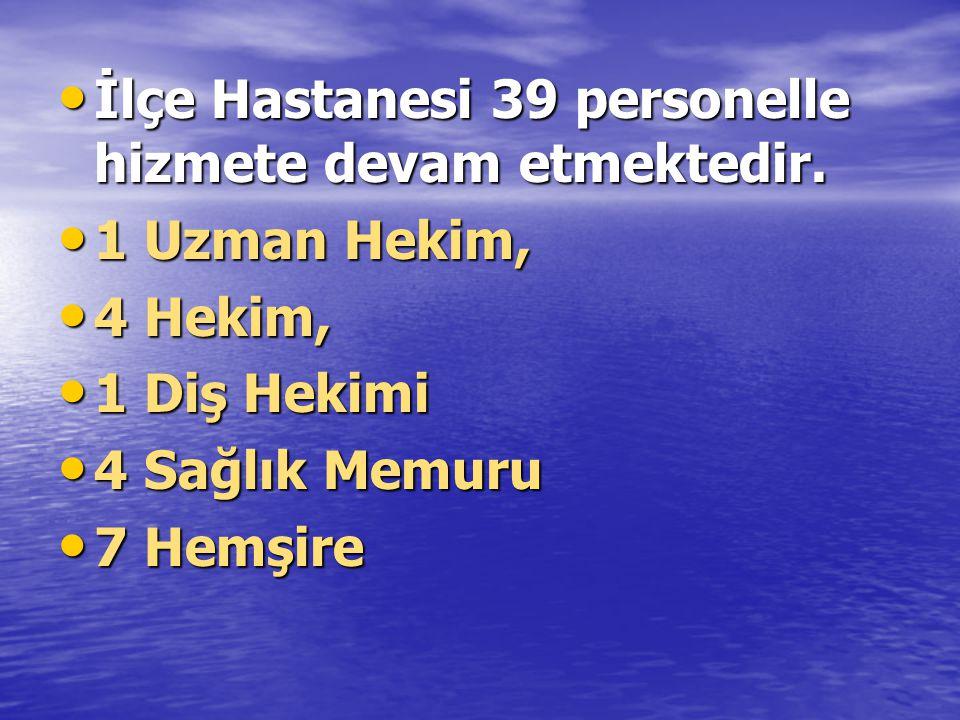 İlçe Hastanesi 39 personelle hizmete devam etmektedir.