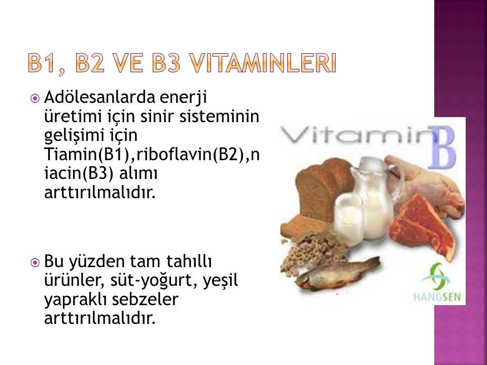 B1, B2 ve B3 vitaminleri